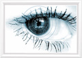 Essilor - Newsletter - 2007